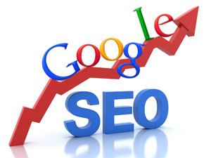 seo services in ludhiana punjab